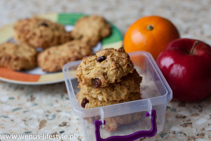 ciasteczka owsiane składniki prosty szybki przepis drugie śniadanie przekąska