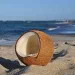 Bardzo zdrowy olej kokosowy – właściwości i zastosowanie